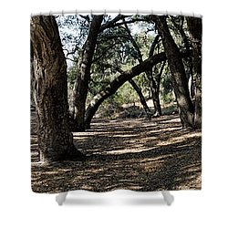 California Canyon Canopy Shower Curtain