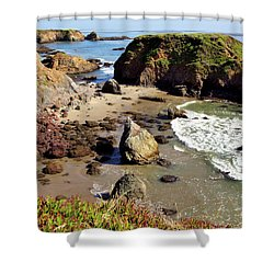 California Coast Rocks Cliffs Iceplant Shower Curtain