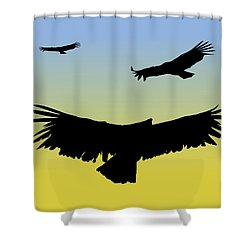 California Condors In Flight Silhouette At Sunrise Shower Curtain