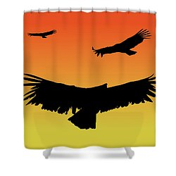 California Condors In Flight Silhouette At Sunset Shower Curtain