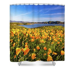 Shower Curtain featuring the photograph California Dreamin by Tassanee Angiolillo