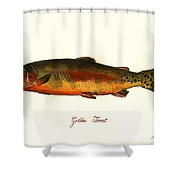 California Golden Trout Fish Shower Curtain by Juan  Bosco
