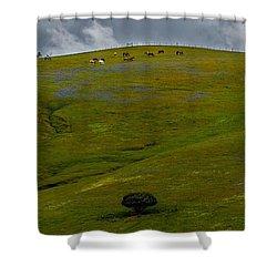 California Hillside Shower Curtain