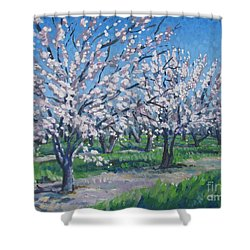California Orchard Shower Curtain by Vanessa Hadady BFA MA