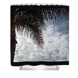 California Palm Tree Half View Shower Curtain