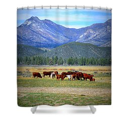 Shower Curtain featuring the photograph California Pastures by Glenn McCarthy Art and Photography