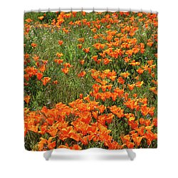 Shower Curtain featuring the mixed media California Poppies- Art By Linda Woods by Linda Woods