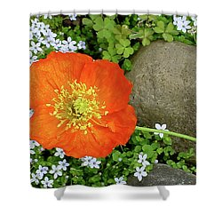 California Poppy Rock Garden Shower Curtain