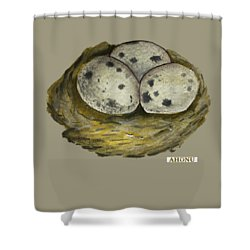 California Quail Eggs In Nest Shower Curtain