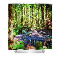 California Redwood Forest Wetlands Ap Shower Curtain