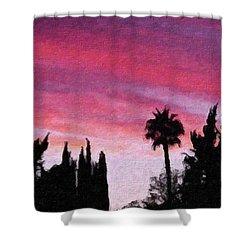 California Sunset Painting 2 Shower Curtain by Teresa Mucha