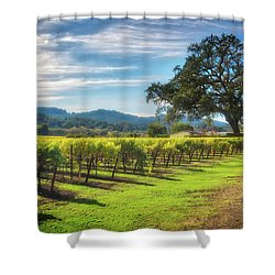 California Wine County - Sonoma Vineyard And Lone Oak Tree Shower Curtain