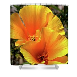 Shower Curtain featuring the photograph Californian Poppy by Baggieoldboy