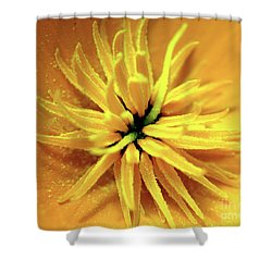Californian Poppy Macro Shower Curtain