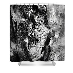 Call Of The Elder Shower Curtain
