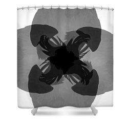 Call Of The Raptors Shower Curtain by David Lee Thompson