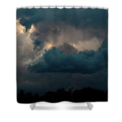 Call Of The Valkerie Shower Curtain by Bruce Patrick Smith