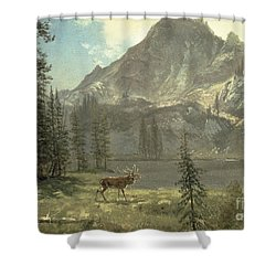 Call Of The Wild Shower Curtain by Albert Bierstadt