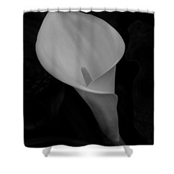 Calla Blossom Shower Curtain