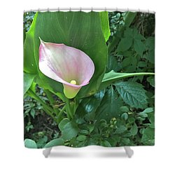 Calla Calling Shower Curtain
