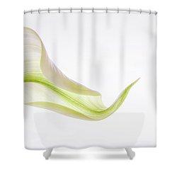 Calla Curves 2 Shower Curtain