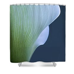 Shower Curtain featuring the photograph Calla Curves by Tom Vaughan