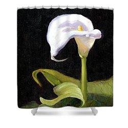 Calla Lily Shower Curtain by Alice Leggett