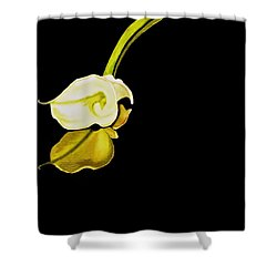 Calla Lily Reflection Shower Curtain
