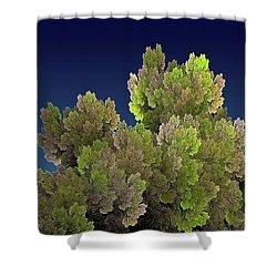 Callahan Grove Spring Shower Curtain
