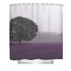 Calm Autumn Mist Shower Curtain