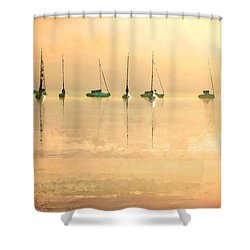 Shower Curtain featuring the digital art Calm Waters by Shelli Fitzpatrick