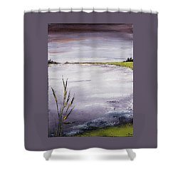 Calmer Water Shower Curtain by Carolyn Doe