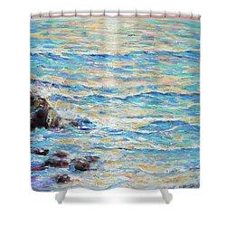 Cambria Rocks Shower Curtain