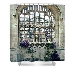 Cambridge Dreams Shower Curtain