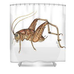 Camel Cricket Shower Curtain by Cindy Hitchcock