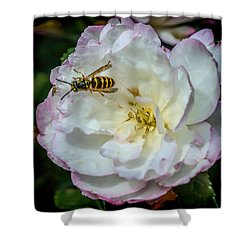 Camelia With Company Shower Curtain