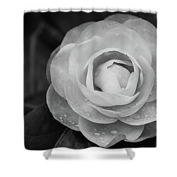 Camellia Black And White Shower Curtain