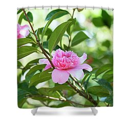 Camellia Ballet Queen Shower Curtain