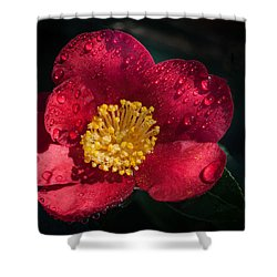 Camellia In Rain Shower Curtain