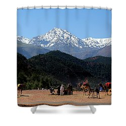 Shower Curtain featuring the photograph Camels 1 by Andrew Fare