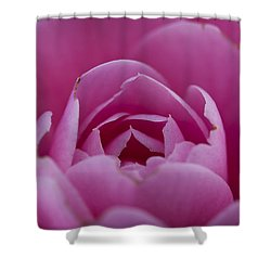 Camellia Close-up Shower Curtain