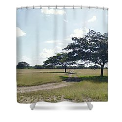 Camino En La Pradera Shower Curtain