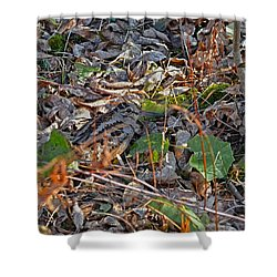 Camouflaged Plumage With Fallen Leaves Shower Curtain by Asbed Iskedjian