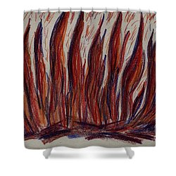 Campfire Flames Shower Curtain by Theresa Willingham