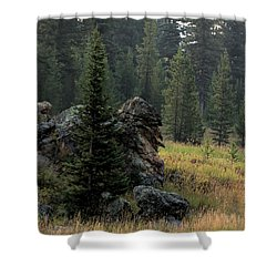 Campground Springs Shower Curtain