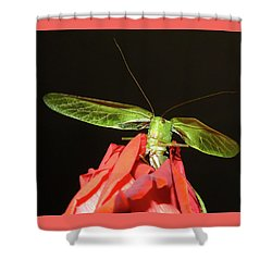 Can You Hear Me Now By Karen Wiles Shower Curtain