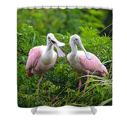 Can You Hear Me Now Shower Curtain by Richard Bryce and Family
