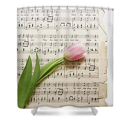 Shower Curtain featuring the photograph Can You by Kim Hojnacki
