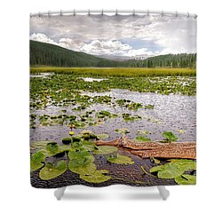 Can You Smell The Rain? Shower Curtain