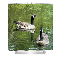 Canada Goose Duo Shower Curtain by Al Powell Photography USA
